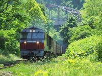 大沼公園にて その5 - お寺や神社、古い町並み、鉄道、他色々の写真ブログ