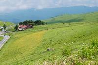 霧ヶ峰高原 Now - いぐさん流 山と花の写真(富士山)