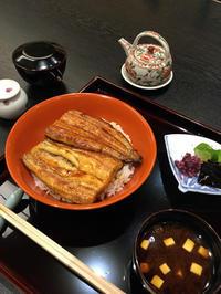 静かに鰻を頂く @肥後橋 福吉兆 - 猫空くみょん食う寝る遊ぶ Part2