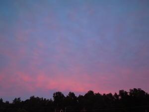 ピンク色の空 -