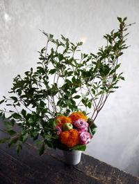 パキスタン風カレー×テキーラのお店の2周年に。南2東1のビル2Fにお届け。2017/07/21。 - 札幌 花屋 meLL flowers