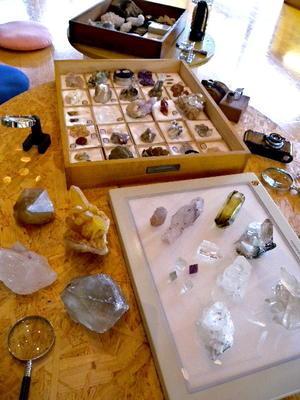 石と化石と子どもたちとの一日 -