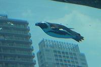 「天空のペンギン」~サンシャイン水族館・マリンガーデンNEWオープン!! - 続々・動物園ありマス。