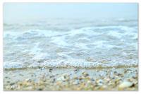 海のあわとスプーン。 - Yuruyuru Photograph