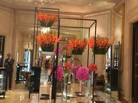 Parisの別格の大人の顔フォシーズンズホテル・ジョルジュサンク - やさしい光のなかで