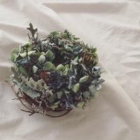 紫陽花 - タマハナ