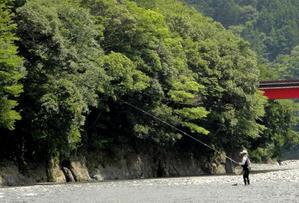 大井川上流に行ってきました - 鮎、山女魚、キジさんに会いたくて