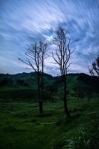 弦月の蛍火 - Qualia