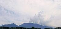 どんより天気だから・・・^^ - 浅間山眺めてほのぼのlife~花だより♪