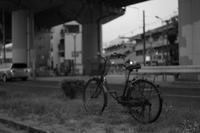 分離帯と自転車 - EPSONで行こう(仮)