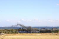 南房総の海を望むD51 - 2017年冬・内房線 - - ねこの撮った汽車