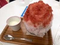 埜庵のかき氷@藤沢 さいか屋  - mayumin blog 2