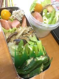 7月25日(火) - 高校男子弁当ときどき趣味&動物