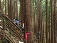 夏休み 小学生向け 山と木の体験イベント - 国産材・県産材でつくる木の住まいの設計 FRONTdesign  設計blog