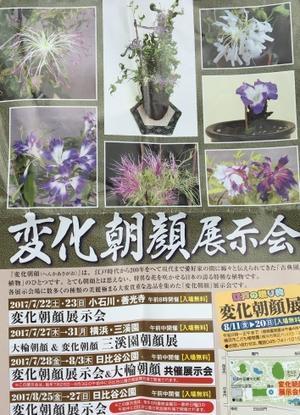 夏の美術展、東京。 - 『一日一畫』 日本画家池上紘子
