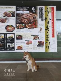 鰻、食べますか? どうします? - yamatoのひとりごと