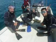わーるどわいど ~糸満近海シュノーケリング~ - 沖縄本島最南端・糸満の水中世界をご案内!「海の遊び処 なかゆくい」