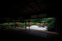 さつきの庭! ~詩仙堂~ - Prado Photography!