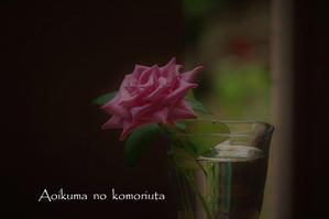 花のいのち・・・薔薇 - あおいくまの子守歌
