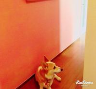 壁のペイント - **Le petit cadeau **     handmade & life