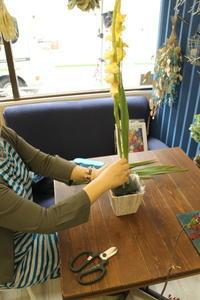 ベーシックレッスン バーティカル  - 北赤羽花屋ソレイユの日々の花