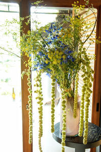 花を見て誰かを思い出す優しい時間 - Groseille グロゼイユ~四季のお庭とぼちぼちお花活動~