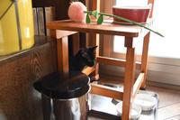 めざせ黒猫マスターへの道 その3 - りきの毎日