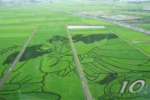 世界最大の田んぼアート! -