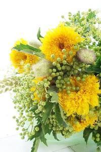 東北八重を軽~く見せるのは、私を軽く見せるぐらい難しい! - お花に囲まれて