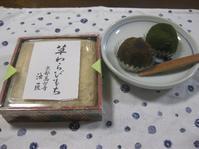 わらび餅 - 花図鑑