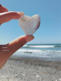 heart shaped shell - on the shore