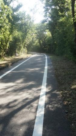 自転車道の除草 -