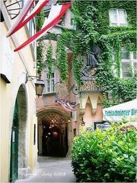 Vienna July 2003 - Chaton の ひとりごと