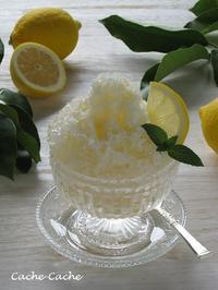 はちみつレモンのかき氷 & 我が家の庭のちびレモン♪ - Cache-Cache+