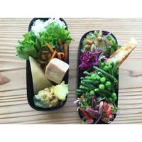 鮭ムニエルBENTO - Feeling Cuisine.com