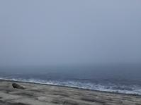 濃霧の海 - あいのひとりごと