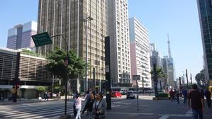 サンパウロで上手に暮らすためには!?(長い独り言) -