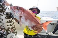 2017,07/26 鯛ラバ+スローJ - 鯛ラバ遊漁船  Miyazaki Offshore Boat Game Marine Frog