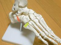 膝から肘、肩、首へと広がる痛み - ヨガと官足法で素敵生活