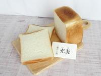 三浦 充麦の角食パン - ぱんのみみ
