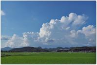 梅雨に後戻り - 下坂中学校 写真部 Ⅱ