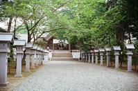 信濃神社と弟の闘病 - 照片画廊