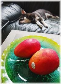 トロピカルフルーツ - 日々楽しく ♪mon bonheur