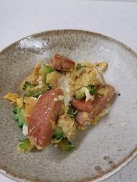 ゴーヤチャンプルー - 食いしん坊イノキチとカイトの日記