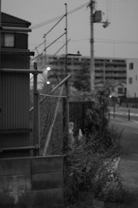 夕闇 - EPSONで行こう(仮)