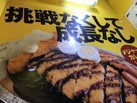 ゴーゴーカレー!!@ 八王子 - よく飲むオバチャン☆本日のメニュー