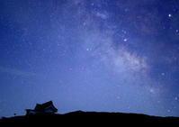 星降る夜 - 野鳥メモ