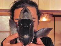 石鯛仮面 - Iターンで漁・猟師(直売有)の主人と離島暮らし