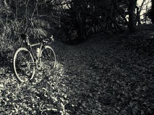 Brings backs memories by photograph/2008 山道古道は鼓動で走る - 空のむこうに ~自転車徒然 ほんのりと~