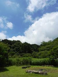 食欲旺盛です。 - 千葉県いすみ環境と文化のさとセンター